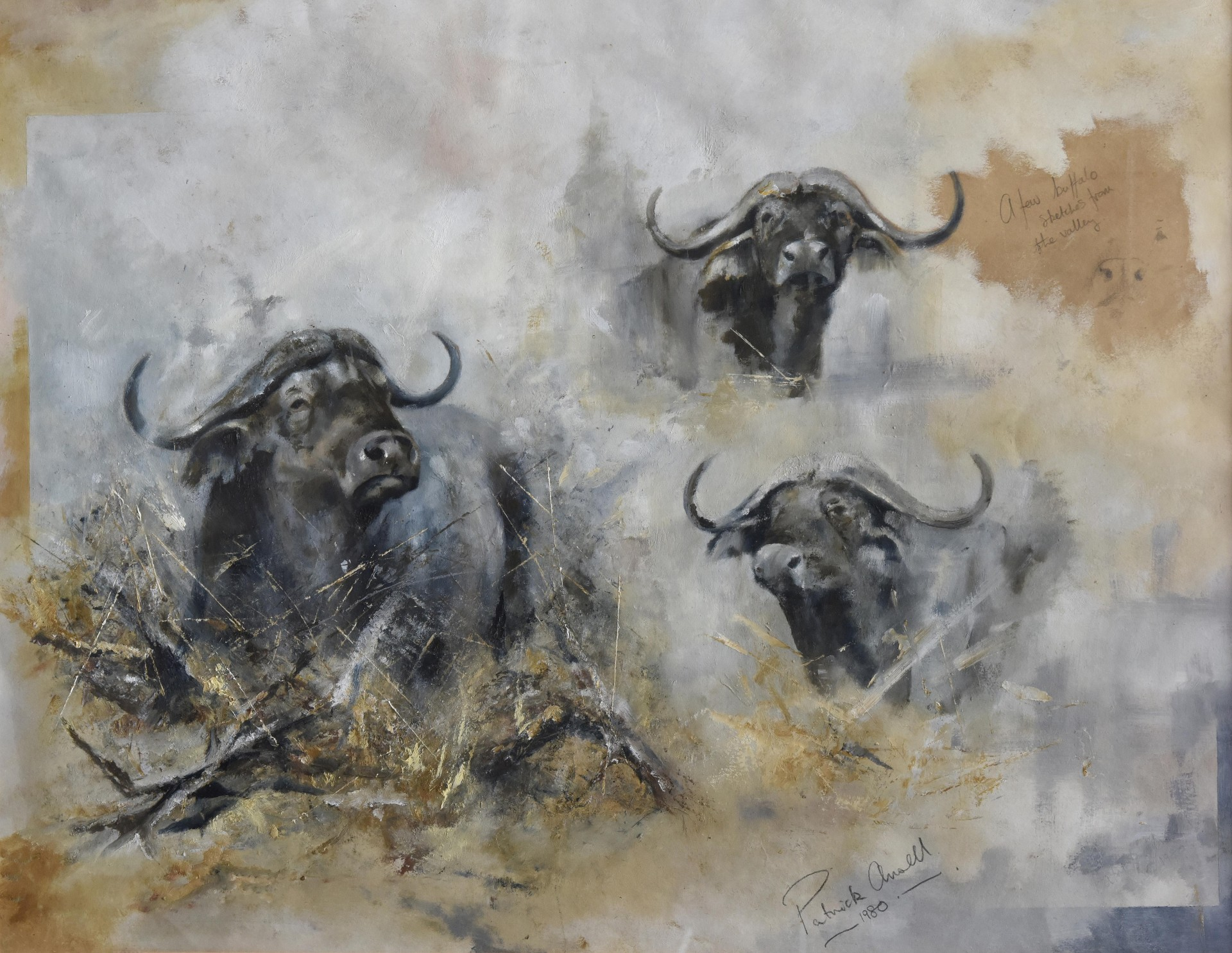 A Few Buffalo Sketches From The Valley