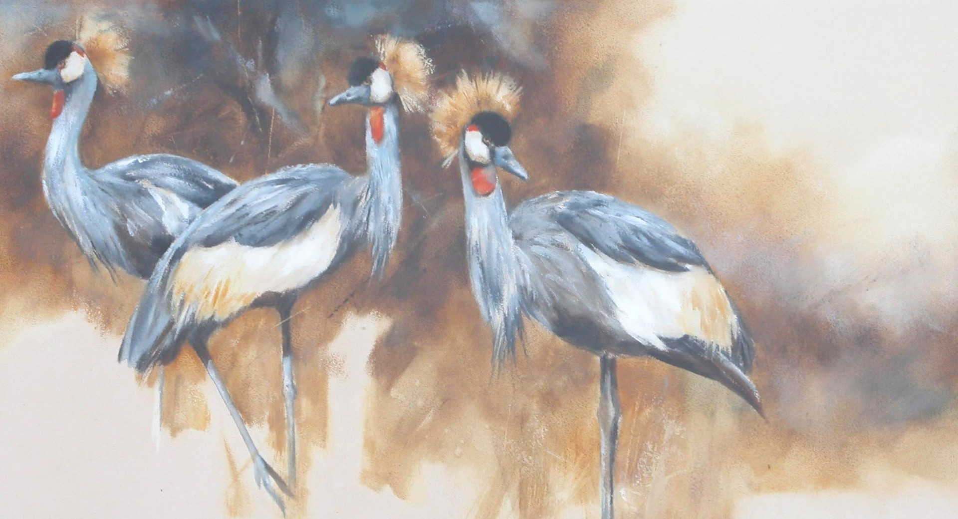 Black Crowned Cranes